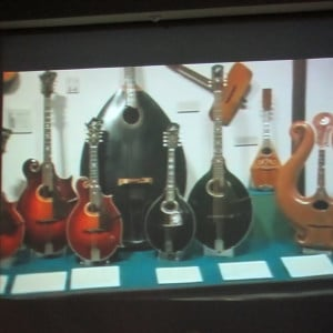National Music Museum String Instruments