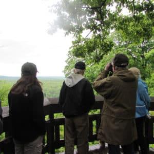 Birding at Weston State Park